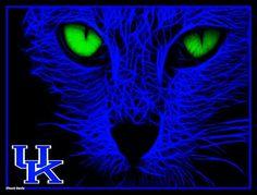 .BIG BLUE KY WILDCAT!!!