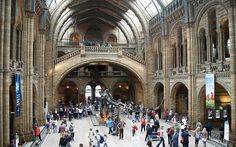 Best Science Museums: Natural History Museum, London