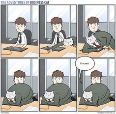 adventures-of-business-cat-comics-tom-fonder-16__880