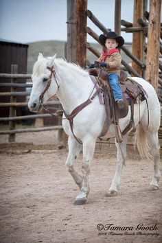 Every little Cowboy needs a trusting and loyal Steed..     Such a cute little cowboy.