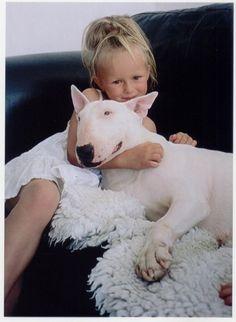 Amizade sincera Bull Terrier e crianças #proteja #bullterrier #amizade