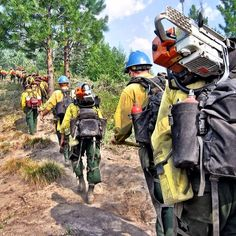 Firefighter Emt, Wildland Firefighter, Volunteer Firefighter, Forest Pictures, Cool Pictures, Wildland Fire Gear, Thin Green Line, California Wildfires, Into The Fire