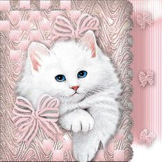 3D Gif Animations - Free download i love you images photo background screensaver e-cards: Cats Glitter Photo Graphics Animated gifs free pic...