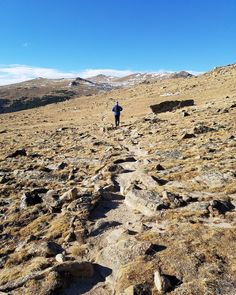 It's about to be the last chance to hike the alpine tundra of @rockynps without snow shoes! There's something unbelievably beautiful about this barren landscape.  #RockyIsMyPark #tundra #kansallispuisto #nationalpark #nature #luonto #Colorado #ColoradoLive #visitcolorado #coloradoliving #hiking #patikointi #vaellus #mountains #vuoret #travel #matkalla #reissu #adventure #passionpassport #trailchat #BPmag (via Instagram)