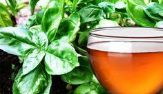 Il basilico può offrire un rimedio naturale decisamente utile per contrastare la cellulite, vediamo come...