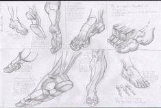 burne hogarth - Google Search Foot Anatomy, Anatomy Study, Anatomy Reference, Drawing Reference, Life Drawing, Painting & Drawing, Art Education, Drawings, Google Search