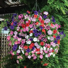 wave petunia flower basket. I like this! all of my favorite petunias in one hanging basket