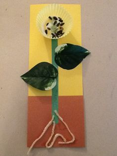Fun parts of a plant activity - construction paper, fake leaves, yarn, cupcake liner, and sunflower seeds