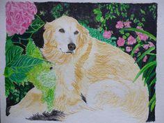 Pet Portrait Golden Retriever Watercolor Memorial 12 X 9 Inch By Pigatopia by Shannon Ivins