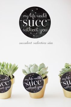 Valentine's Day Succulent Gift Idea With Printable
