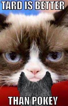 I agree Grumpy Cat,  I agree.