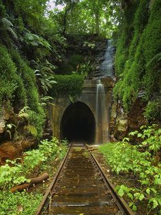 The abandoned railroad tunnel in Helensburgh, Australia. It was opened in 1889 and abandoned in 1915.