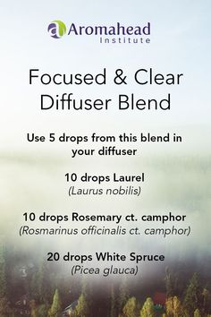 Laurel Leaf essential oil (Laurus nobilis) has a fresh, spicy scent that opens your lungs and your mind.  It invigorates and inspires!!   It's a great helper when you need mental focus but you're feeling congested