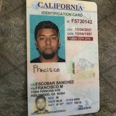 Drivers Images Best 2019 Fake In License Real And 22