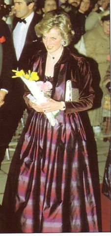 February 3 1985 Diana attended a concert arranged by the Order of St. John Musical Society at St. David's Hall, Cardiff, Wales Shirley Bassey Concert at St David's Hall in Cardiff in aid of the International Youth Year