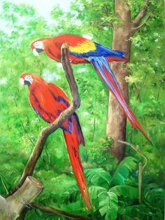 """""""El Color de Costa Rica"""""""