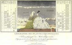 Figure 7: Geography of plants in tropical lands. A tableau of the Andes and neighbouring regions