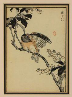 Kono Bairei (Japanese 1844-1895):A set of four 'Kacho-e' coloured woodblock Prints,