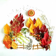 """I'm so glad I live in a world where there are Octobers,"" ~L. (Green Gables from my book, The Art of Flora Forager. Leaf Crafts, Flower Crafts, Fall Crafts, Halloween Crafts, Arte Floral, Deco Floral, Make Up Art, Art For Kids, Crafts For Kids"