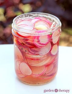 Pickled Radishes with vinegar – these are surpringly addictive! Pickled Radishes with vinegar – these are surpringly addictive! Quick Pickled Radishes, Pickled Vegetables Recipe, Pickled Garlic, Recipes With Radishes, How To Pickle Vegetables, White Radish Recipes, Pickling Vegetables, Pickled Apples, Fermented Foods