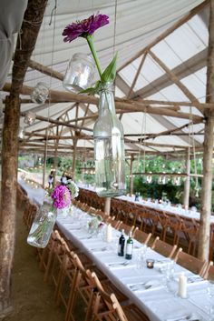 Flowers in recycled bottles & jars decorate the pergola at Wilderness Wood wedding. Tarps and trees can make a wonderful tent. Wedding In The Woods, Our Wedding, Dream Wedding, Wedding Dreams, Wedding Stuff, Metal Pergola, Pergola Kits, Reception Layout, Flowers In Jars