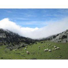 Pirineos en Navarra | #nofilter #navarra #pirineos #pyrenees #españa #spain #luckyme #nature (Foto @_lady.bird_ - #Instagram)