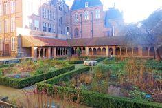 Tussen de gebouwen van het conservatorium gaat u door het hek de tuin in van de pandhof van de voormalige Mariakerk. De kerk werd na de Reformatie in 1580 gesloopt, maar de 11e-eeuwse romaanse kruisgang is er nog. In het complex ligt een fraaie bloemen-, kruiden- en vlindertuin.