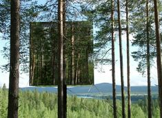 Another view of the stunning mirrored 'treehotel' in Sweden, just 40 miles south of the Arctic cricle