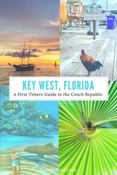 A First Timers Guide to Key West: Must-Sees and Hidden Gems in Florida's Conch Republic The First Timers Guide to has what you need if it's your first trip or a cruise excursion. There's hidden gems and other fun things to do in Key West, Florida Keys, Florida Travel, West Florida, Fl Keys, Cruise Travel, Florida Vacation, Key Largo Florida, Beach Vacations, Central Florida
