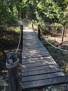 Wooden Bridge at Eagle Mountain Lake Nature Park