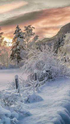 ⭐️Winter sunset (no location given) by Drilon Tahiraj / ❄️