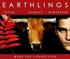 Seven films that will explain to everyone why people go vegan