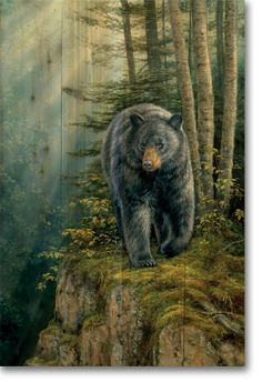 """""""Rocky Outcrop Bear"""" by Rosemary Millette"""
