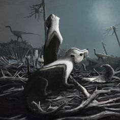 Stereognathus ooliticus by Mark P. Witton
