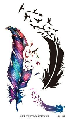 Feathers with little birds flying away