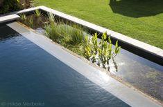 Grote zwemvijver met infini, zwemvijver aanleggen met groot terras | De Mooiste Zwembaden