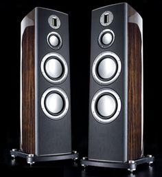 Monitor Audio Platinum Speakers available at  Audio Visual Solutions Group 9340 W. Sahara Avenue, Suite 100, Las Vegas, NV 89117. Please call (702) 875-5561 for availability and pricing