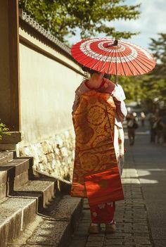 eriocactus.tumblr.com | tokyopic-official: Beautiful Kimono and the Wagasa / Tokyo Pic