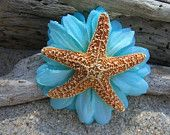 Sugar Starfish Floral Hair Clip-MALIBU BLUE-Beach Weddings, Starfish Hair, Mermaids, Beach Hair, Vacations, Destination Weddings