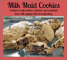 Milk Maid Cookie Recipe! Cookies to promote healthy breast milk supply. Crazy easy- all ingredients into a food processor and bake! #breastfeeding #workingmothers
