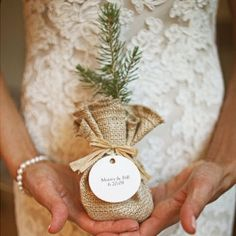 A roundup of fab favors for winter weddings, including these sweet pine saplings. Pic: Alison Conklin