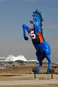Denver Bronco Fans At Denver International Airport Got Into The Spirit Of The 2011 NFL Playoffs By Placing This Number 15 Broncos Jersey (Tim Teebows Number; At That Time) On The Famous Blue Stallion Out Side Of DIA!