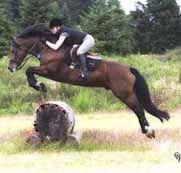 Cardi jumping