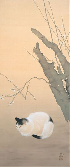 """Cat And Plum Blossom"" by Shunso Hishida, 1906"