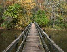 john bryan state park - Bing Images