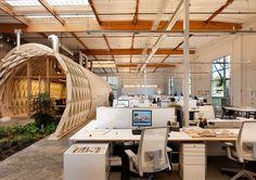 """Mit ein bisschen """"grün"""" wirkt der Arbeitsplatz doch gleich viel schöner und angenehmer. Die Kombination aus Holz und Pflanzen hat was sehr angenehmes. Mehr Infos: http://www.werkzeugweber.de/beraten-planen-liefern/ #office #beraten #planung #plants #wood #style   http://www.werkzeugweber.de/"""