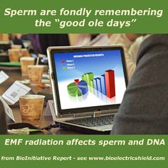 Sperm Remembering good ole days #BioInitiative , #Electromagnetic Frequencies #Electromagnetic Radiation, #Electromagnetic Sensitivity #EMF Radiation#Wifi #electrosensitivity  www.Bioelectricshield.com