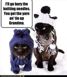 Stop her before she knits again!