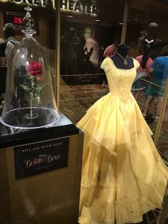 The film's rose beside the costumes in the beauty and the beast exhibit