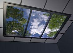 OMG, YES! Fake skylight